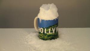 Story Elusive Snow